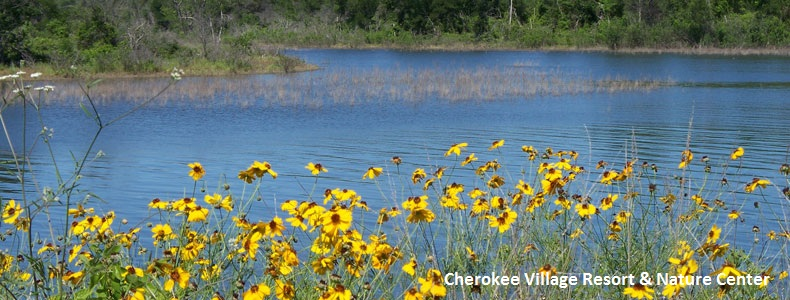 Cherokee Village Resort, Lake Whitney, Texas